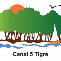 canal5tigretv