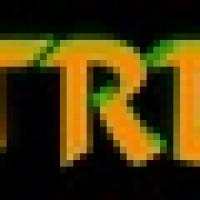 TRD 2 Altin