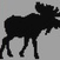 Moose FM - CFXN-FM