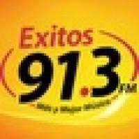 Exitos 91.3 - XHMLS