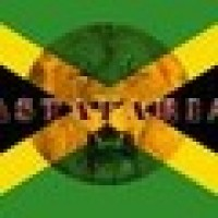 Vibration Reggae Venezuela Online