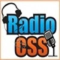 Radio CSS Media