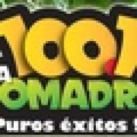 La Comadre 100.1 - XHNE