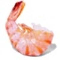 Shrimp Radio