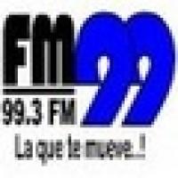 FM 99 99.3 FM