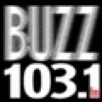 103.1 The Buzz - WIRK-FM-HD2